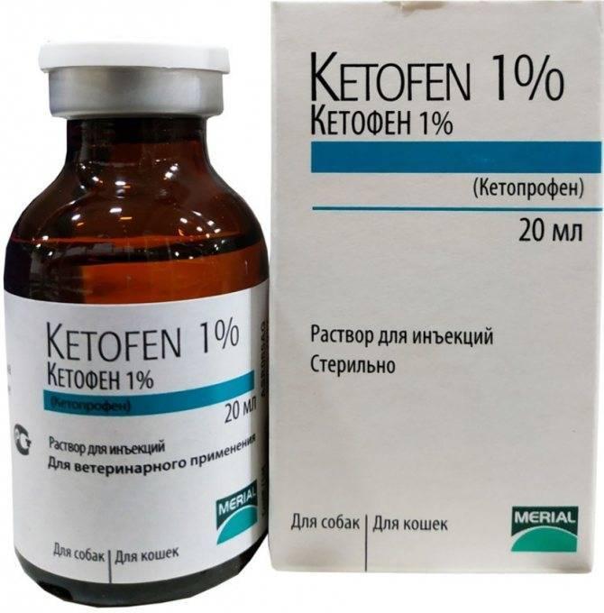 Кетофен для кошек, инструкция по применению таблеток и раствора для уколов