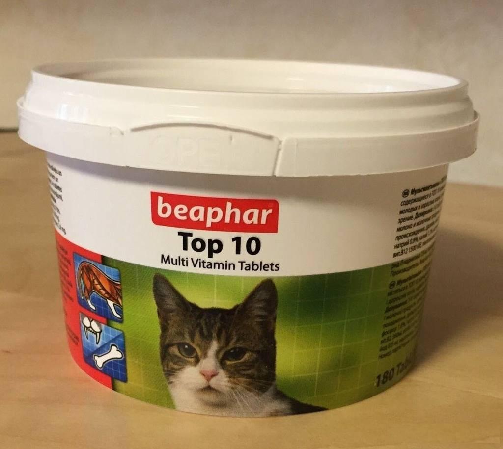 Беафар (beaphar) - витамины для кошек и котов: отзывы, цена