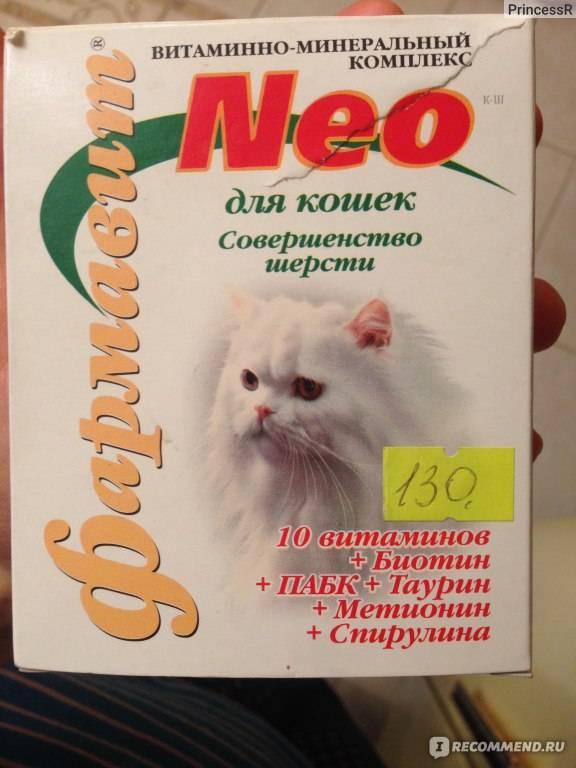 У кошки сильно лезет шерсть - что делать? витамины для кошек против выпадения шерсти. правила ухода за шерстью кошек