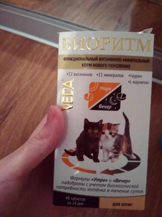 Какие витамины давать котенку?