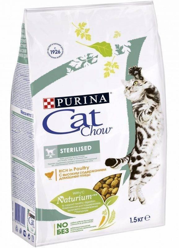Cat chow кэт чау- корм для кошек отзывы и обзор состава: советы +видео