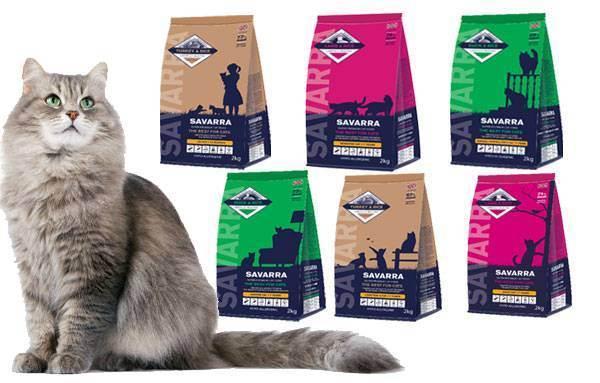 Подробная характеристика кормов от фирмы one only для кошки с обзором состава