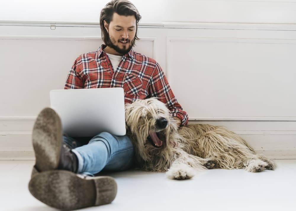 Доходы и расходы ветеринарного бизнеса|рентабельность ветклиники