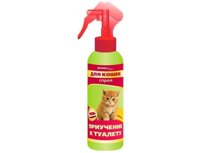 Как котенка приучить к туалету в квартире