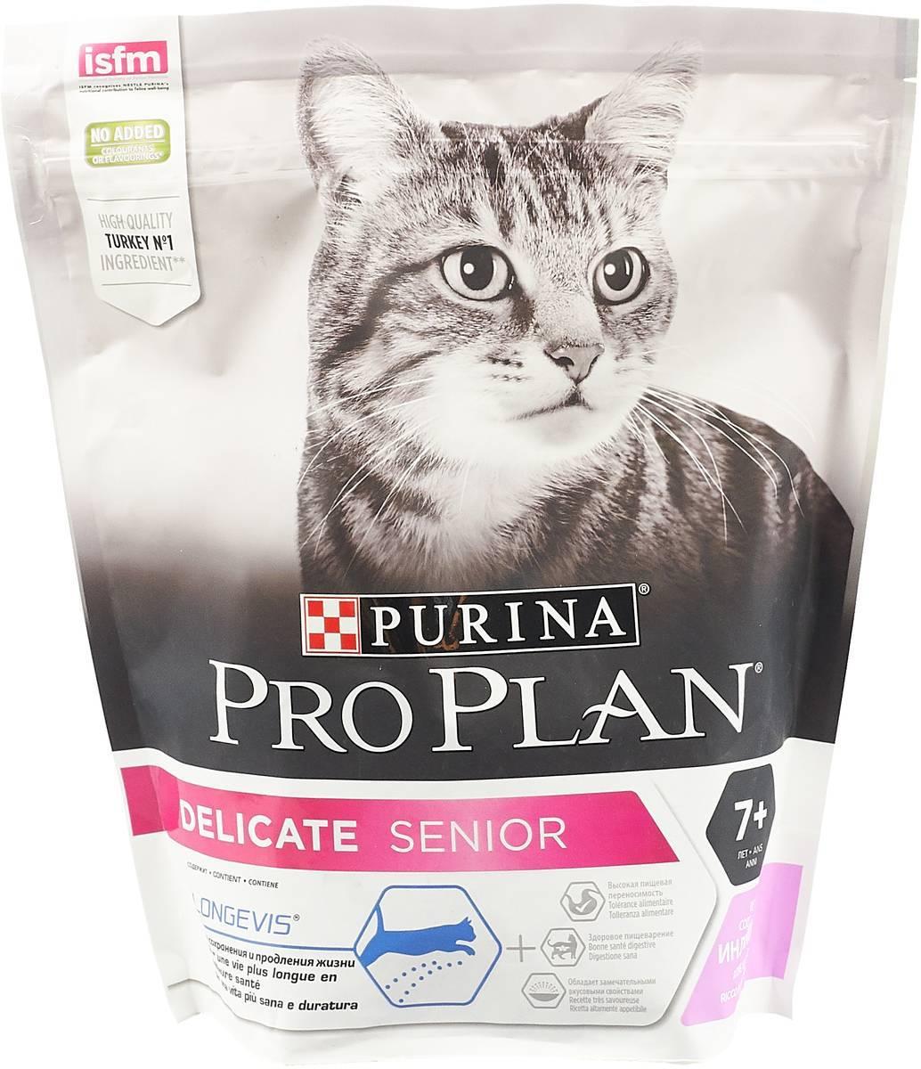 Что такое корм холистик-класса для котят и кошек: рейтинг лучших продуктов
