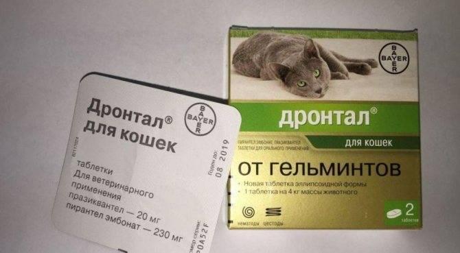 Дронтал для кошек инструкция по применению, показания и противопоказания
