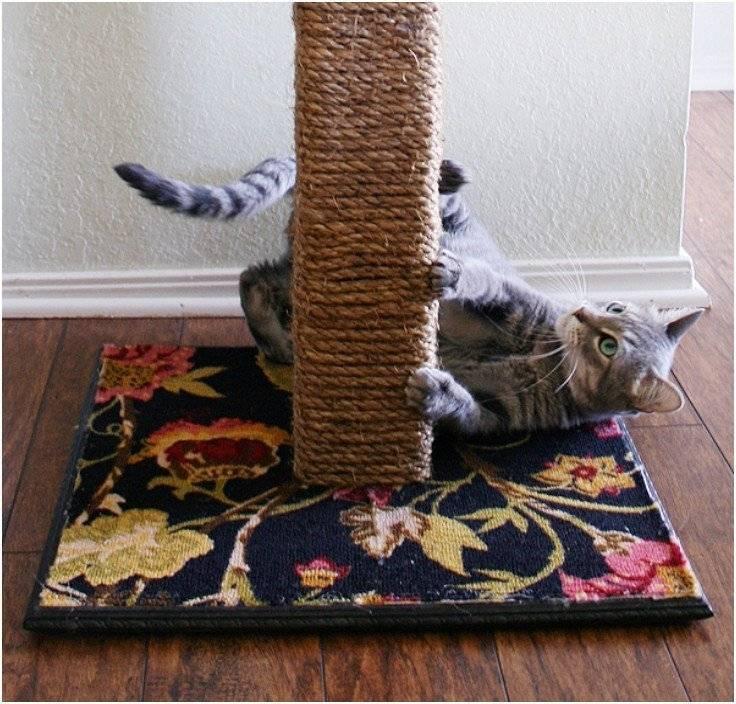 Когтеточка для кошки и кота своими руками: как сделать в домашних условиях, схема и размеры, пошаговая инструкция и фото