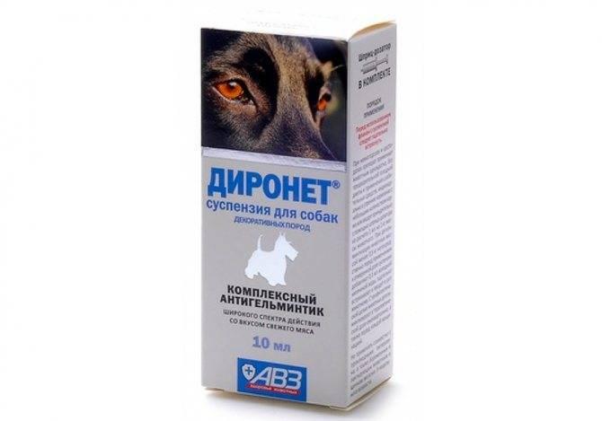 Уколы от глистов для кошек широкого спектра, инъекции для животных от паразитов - wikimedikal.ru