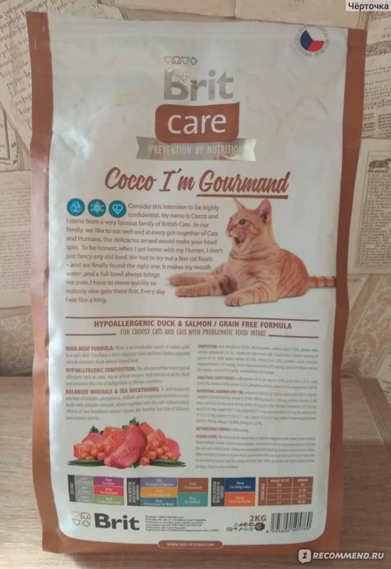 Корм brit care для кошек: отзывы и обзор состава