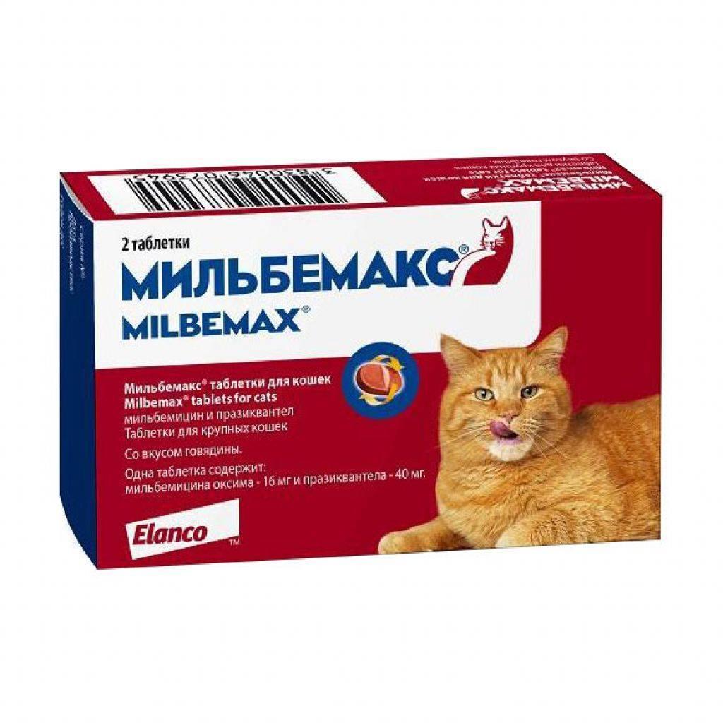 Мильбемакс для кошек - инструкция таблеток от глистов, состав и дозировка, аналоги milbemax и отзывы