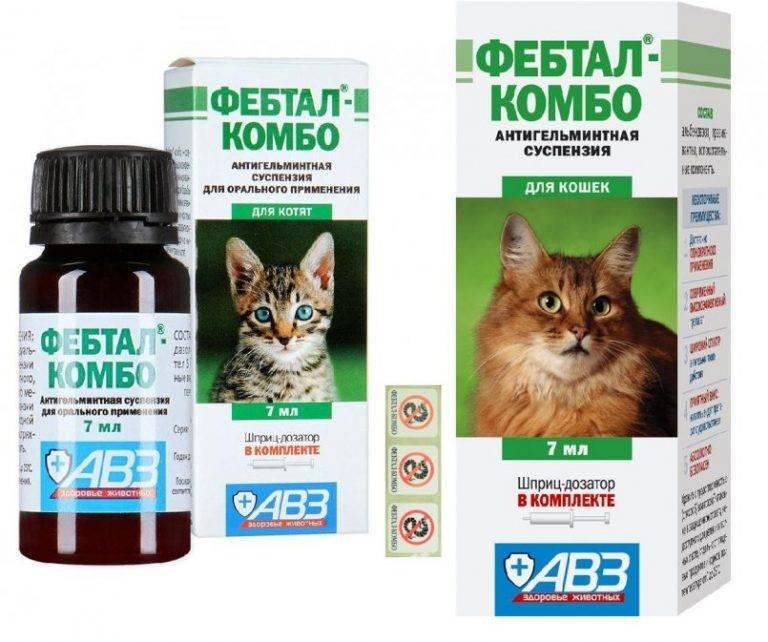 Инструкция по применению фебтала для кошек