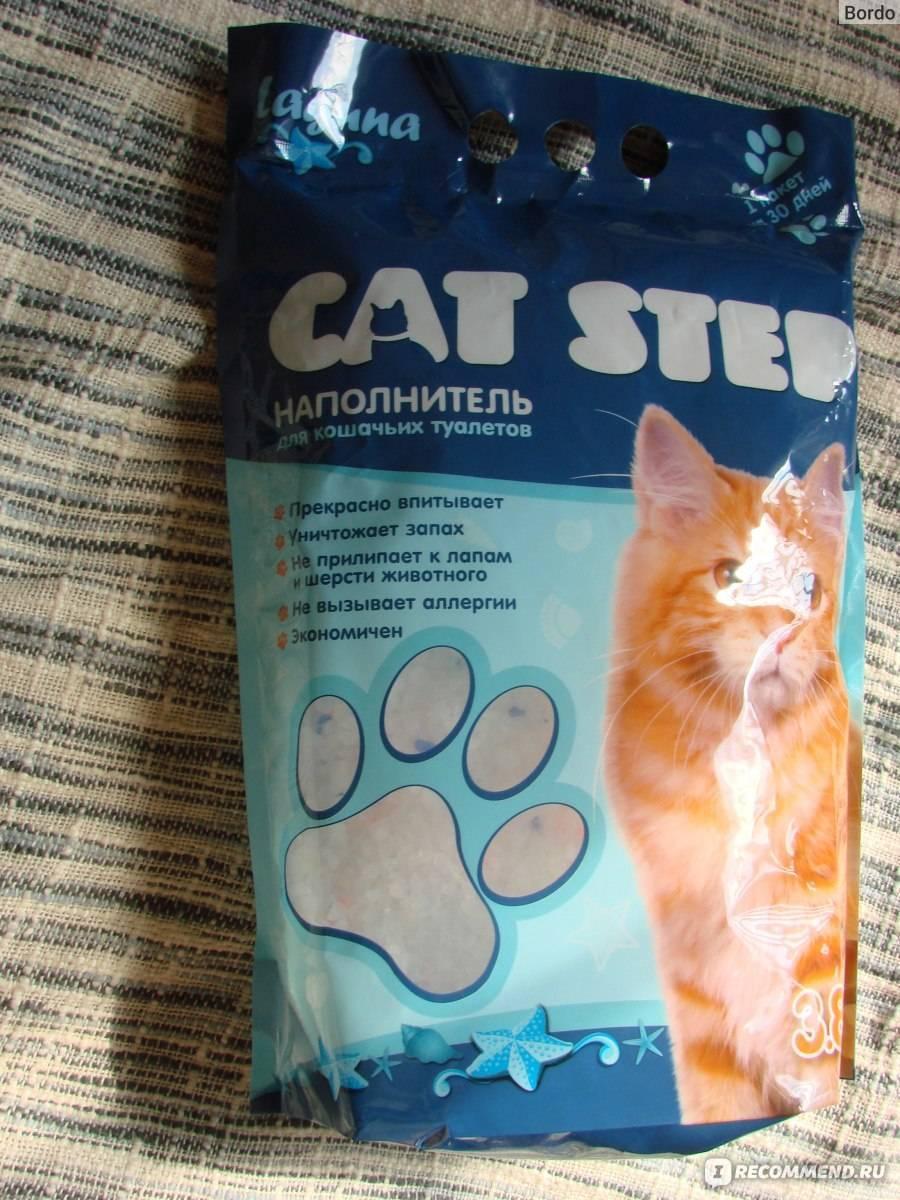 Силикагелевый наполнитель для кошачьего туалета: принцип действия, характеристики, правила использования, популярные марки