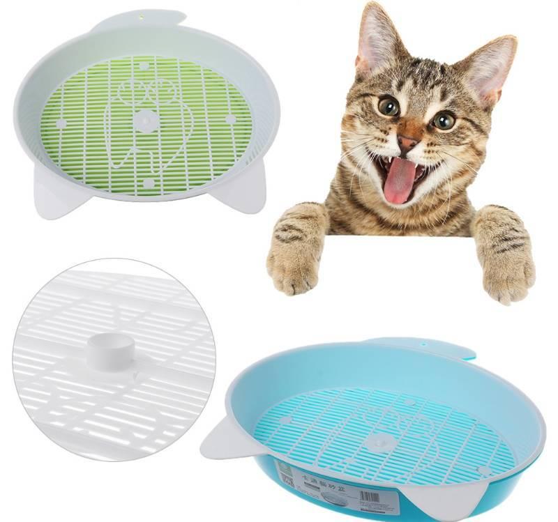 Как приучить кота к унитазу в квартире: достоинства и способы приучения кошки ходить в туалет в сантехнику