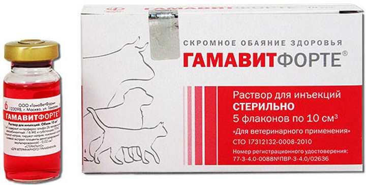 Гамавит для кошек - как колоть и дозировка, состав витаминов, условия хранения и отзывы