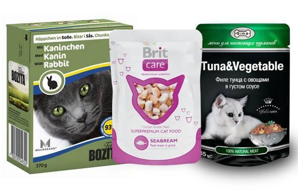 Корма холистик-класса для кошек: рейтинг производителей и правила выбора