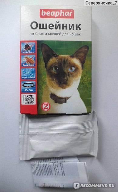 Принцип действия ошейника от блох и клещей для котов и кошек