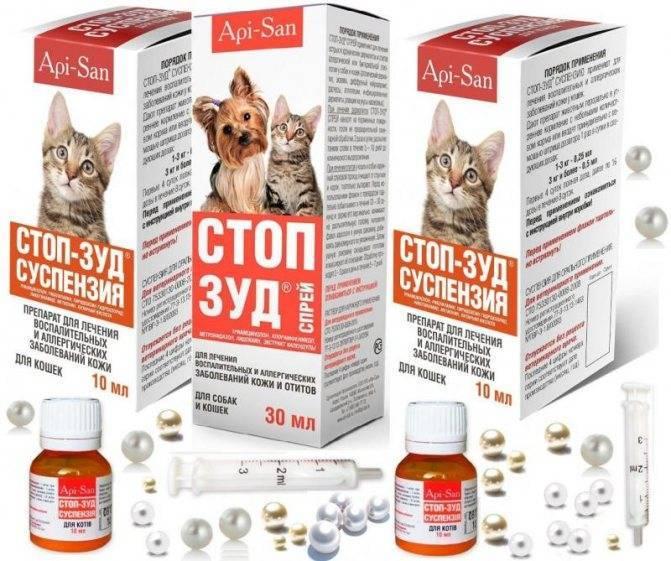 Ветеринарные препараты для кошек от аллергии