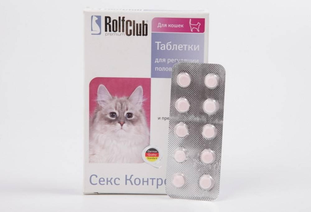 Капли для кошек от гуляния: список негормональных и гормональных средств - медицина - здорово!
