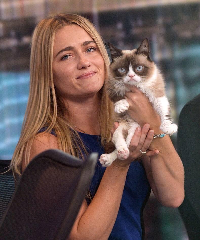 Самый известный кот в мире: знаменитые и популярные кошки, кошачьи звезды интернета
