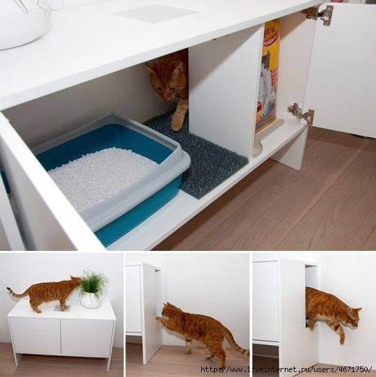 25 оригинальных и функциональных предметов мебели для котов и их хозяев
