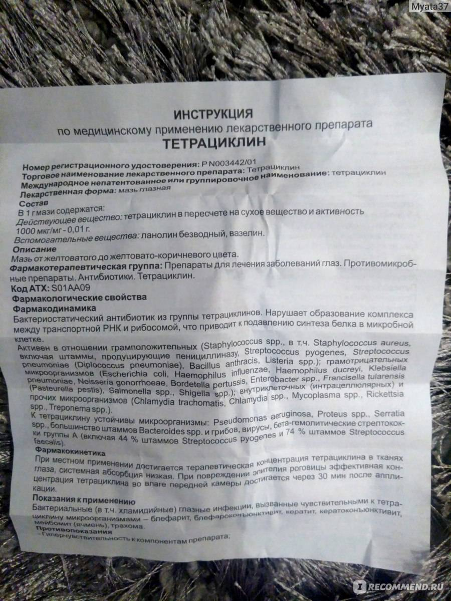 Мазь тетрациклиновая для кошек: описание, инструкция к применению