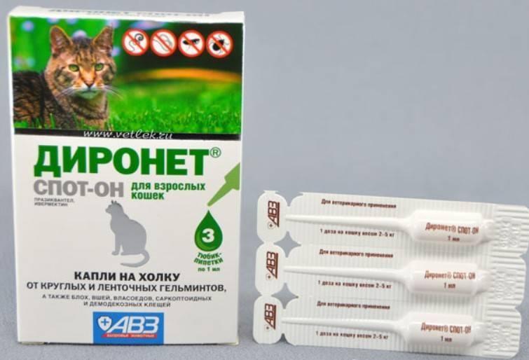 Диронет для кошек: таблетки, капли, суспензия, диронет джуниор