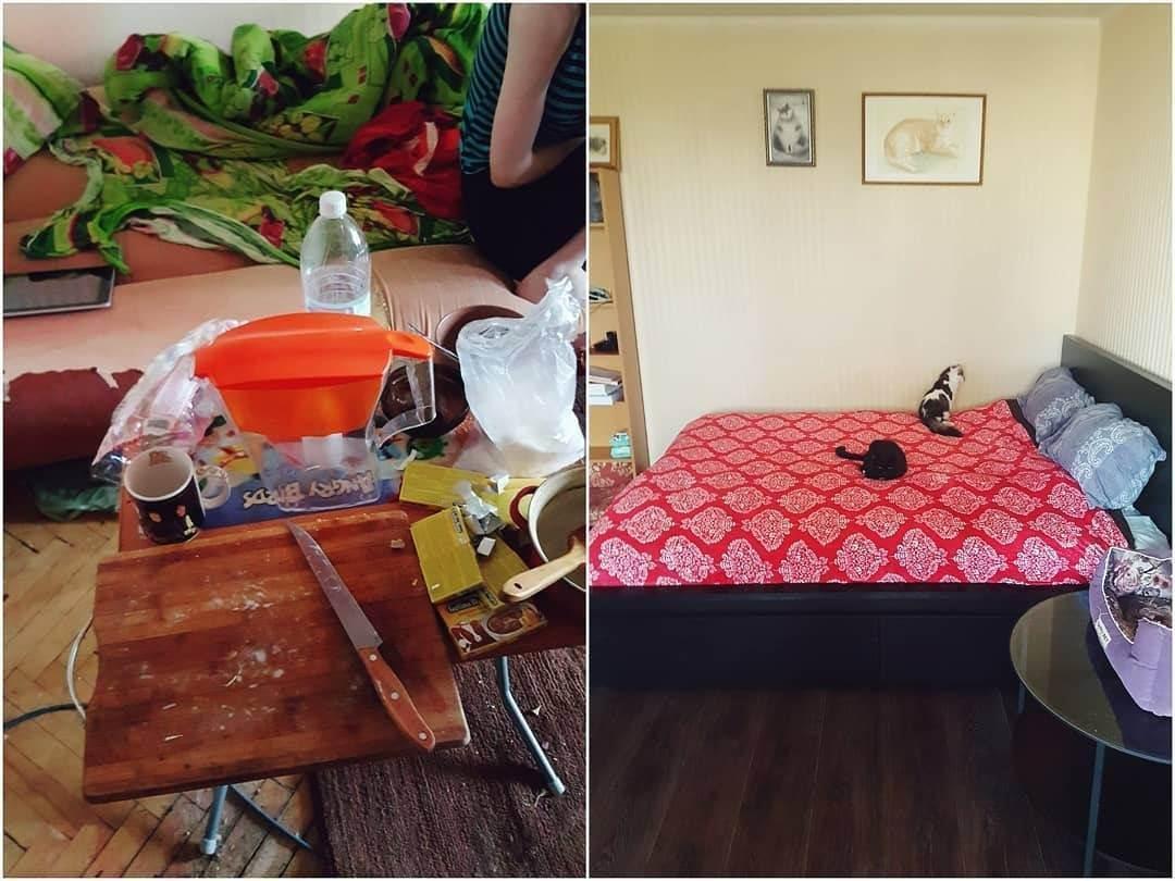 Кошкин дом: правила уборки