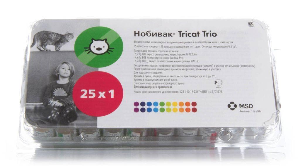 """Вакцина для кошек """"нобивак трикет трио"""": инструкция, отзывы. nobivac tricat trio"""