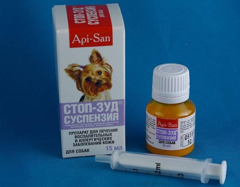 Стоп-зуд для кошек: от укусов и аллергии