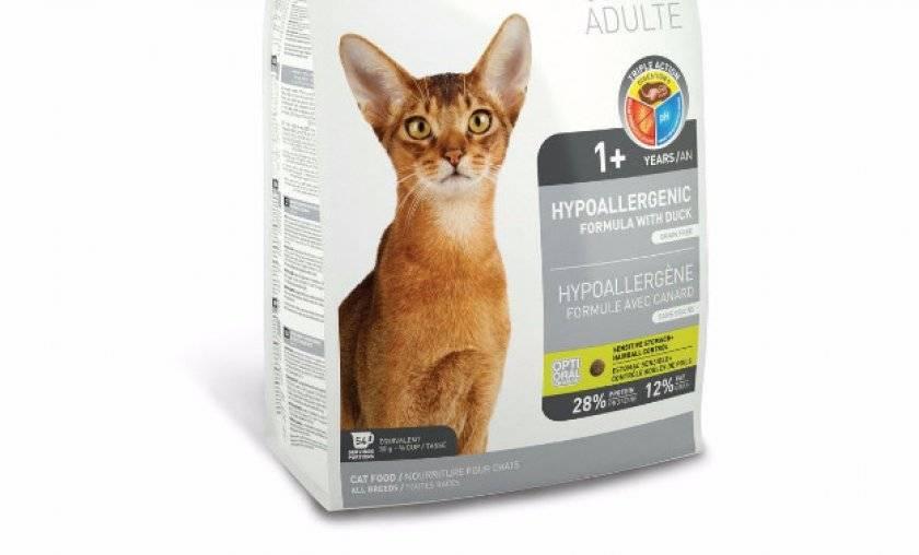 Корм для кошек фест чойс (1st choice) - отзывы и советы ветеринаров