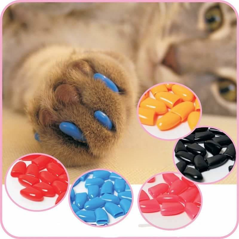 Накладки на когти для кошек: преимущества и процесс наклеивания