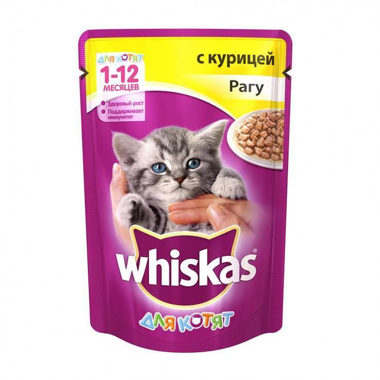 Корм для кошек вискас (whiskas) - отзывы и советы ветеринаров