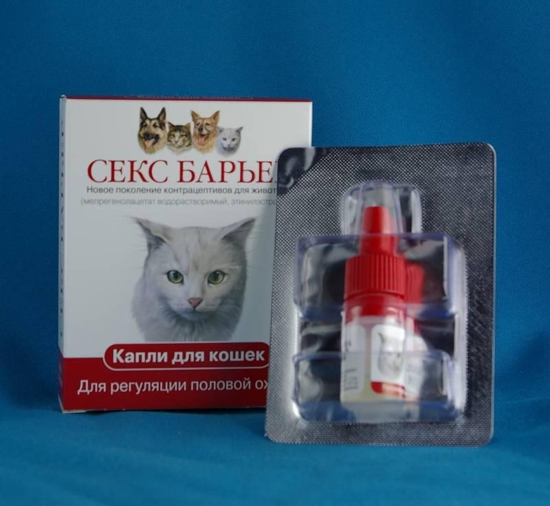 Капли, таблетки и другие средства для кошек во время течки. капли для кошек от гуляния: обзор средств и стоит ли их использовать