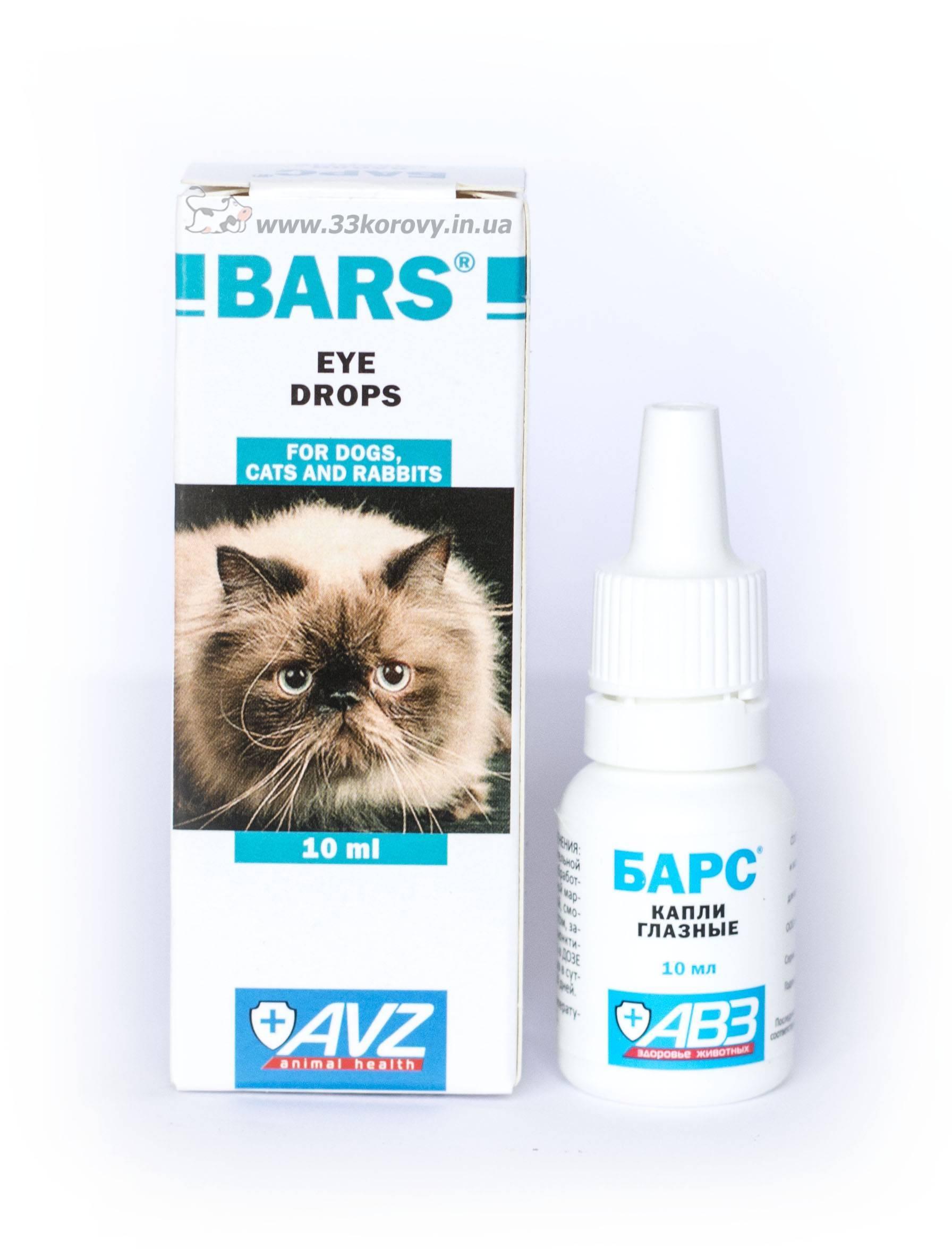 Конъюнктивит у кошки капли тобрекс
