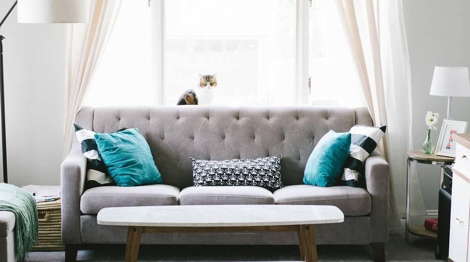 Какую ткань выбрать на диван если дома кошки: обзор антивандальных тканей
