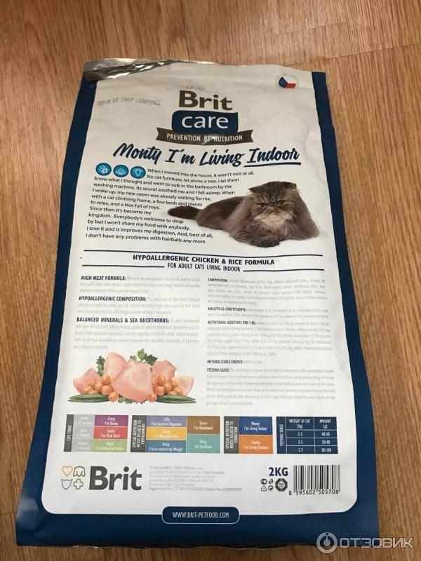 Brit – корм для кошек: premium, care, сухой и влажный, для котят и взрослых котов