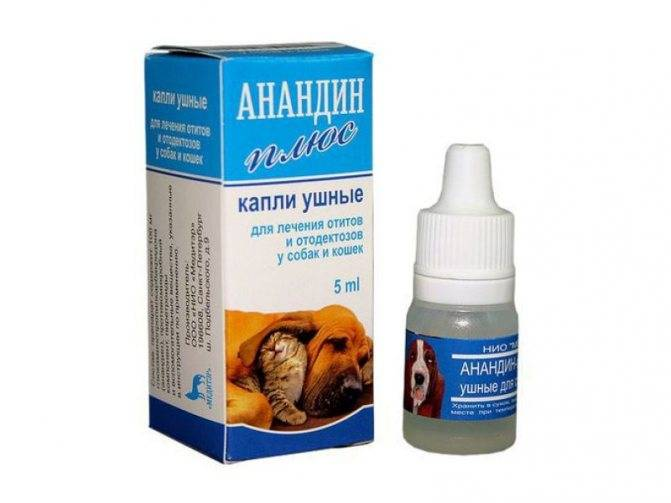 Ушные капли для кошек и другие средства от ушных клещей