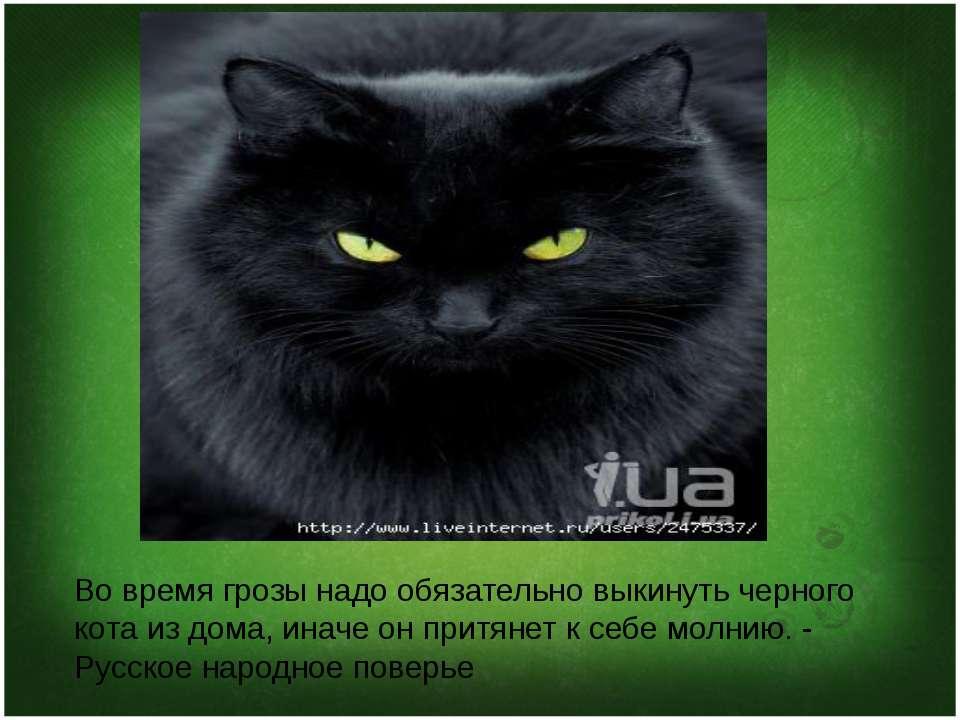 Народная примета «рыжий кот»