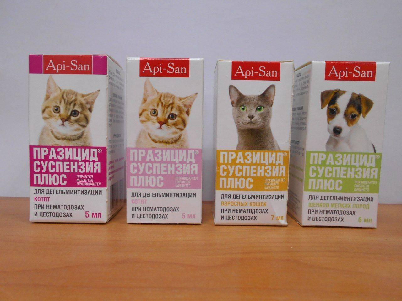 Обзор препарата празицид для кошек и котят: инструкция по применению, отзывы