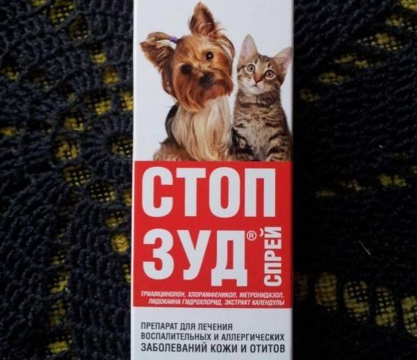 Суспензия стоп зуд для кошек: инструкция по применению,описание и характеристика, состав и отзывы