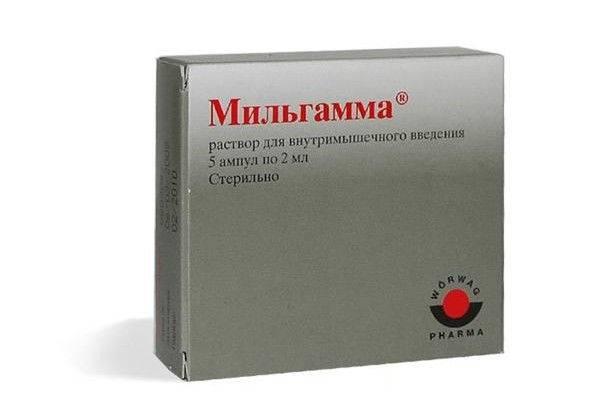 Как давать препарат Мильгамма кошке?