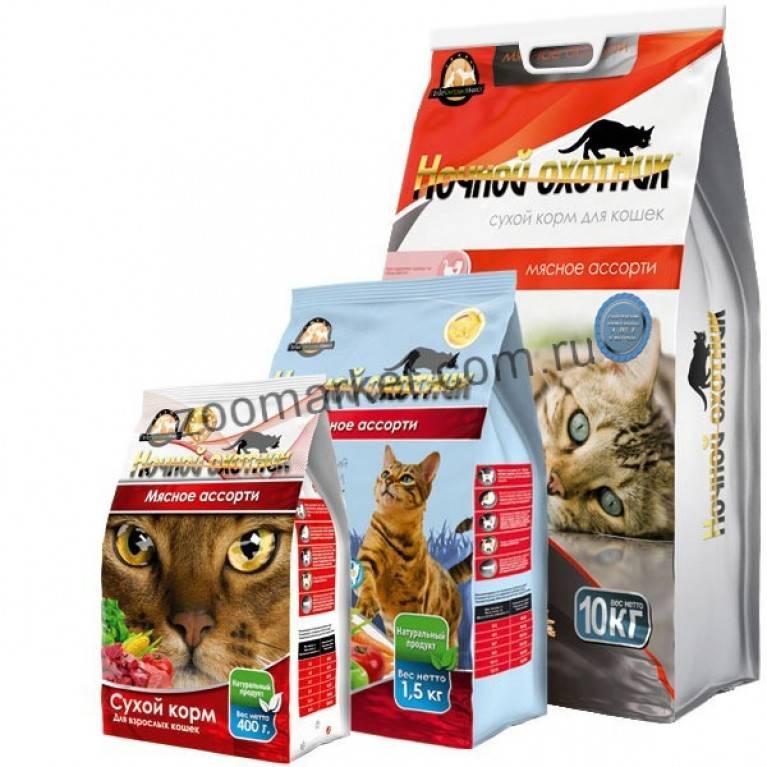 Корм для кошек: каким кормить, советы ветеринаров