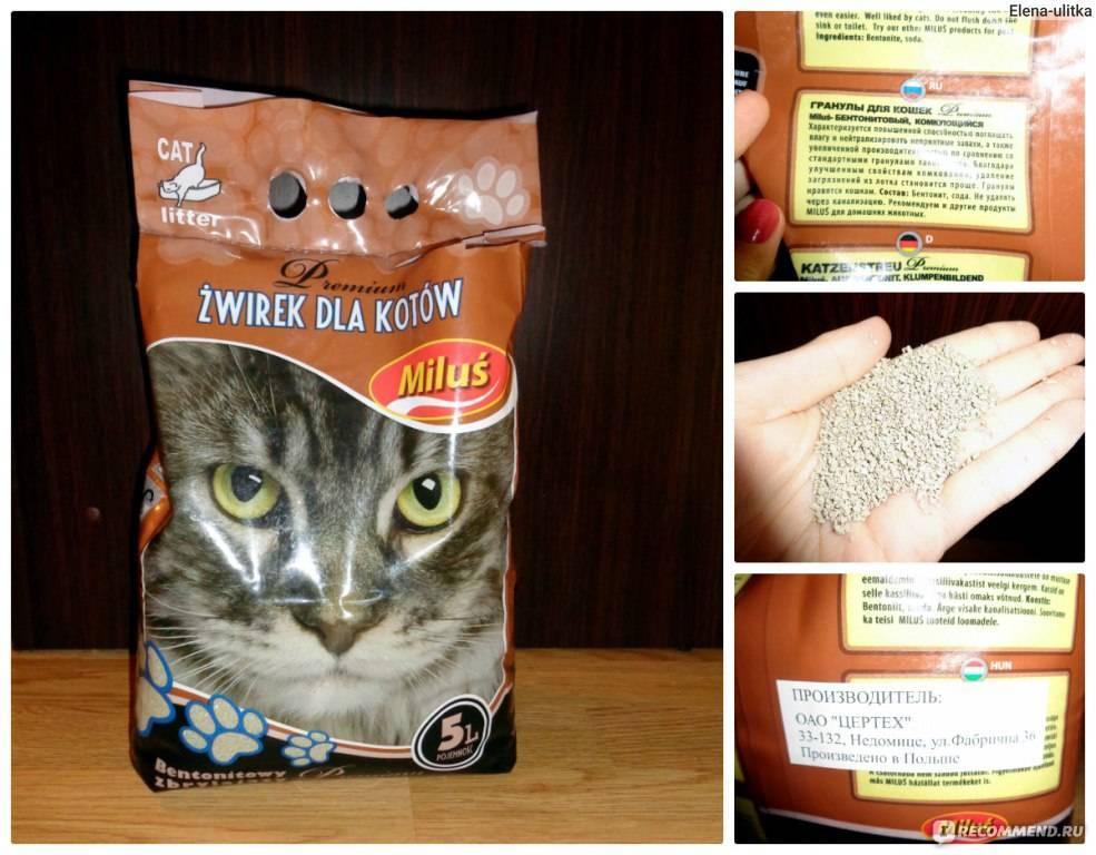 Виды и особенности кошачьих наполнителей