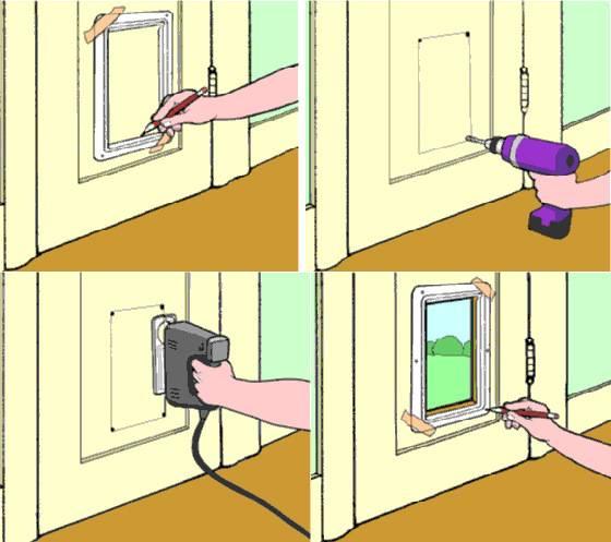 Правильный выбор дверцы для кошки: полезные советы по покупке и монтажу