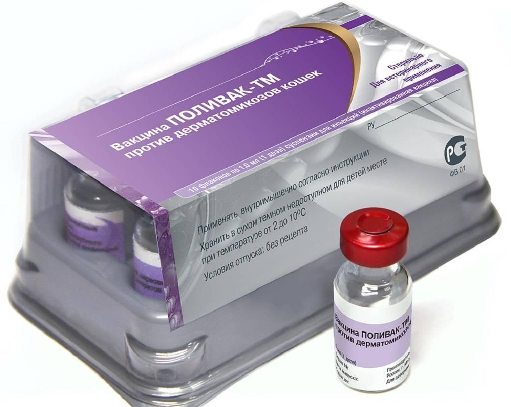 Поливак-тм (вакцина) для собак, кошек, лошадей   отзывы о применении препаратов для животных от ветеринаров и заводчиков