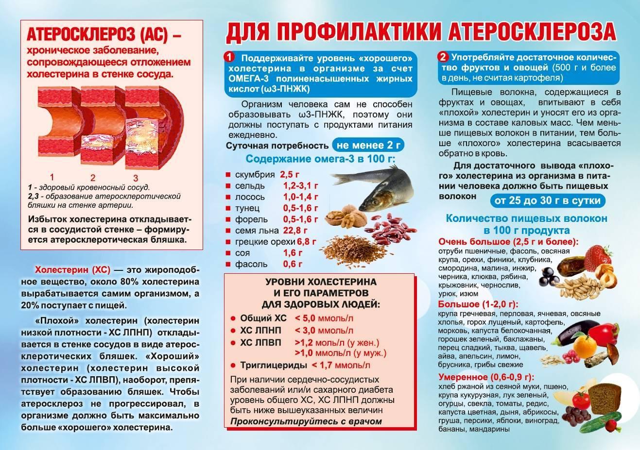 ᐉ кормление кошек при запоре: рацион, натуральные продукты, сухие корма - zoomozaika.ru