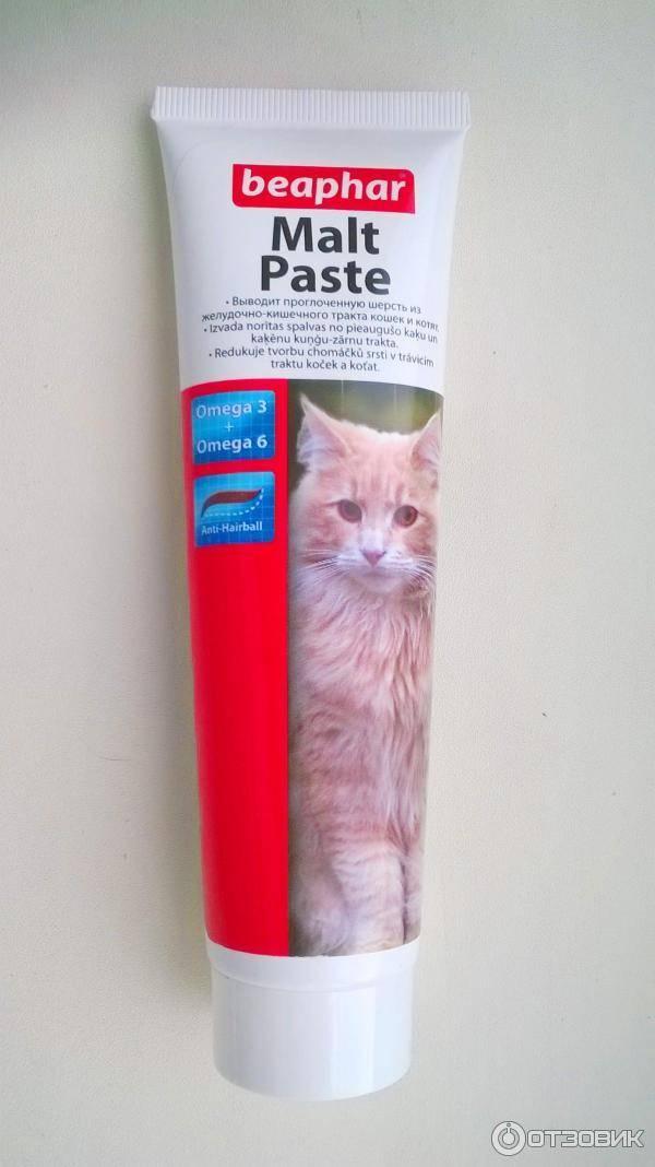 Как давать мальт пасту кошке?