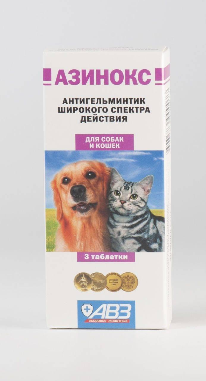 Азинокс для кошек инструкция по применению