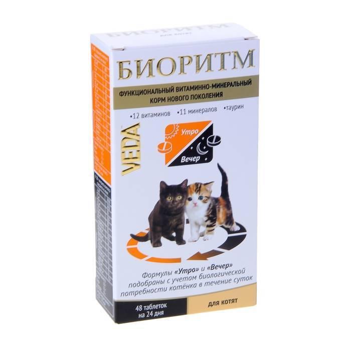 Витамины для кошек стерилизованных — рассмотрим во всех подробностях