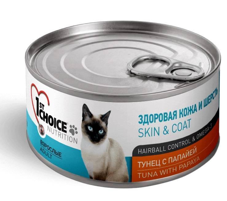 Корм в пакетиках для кошек: из чего делают и сколько давать в день?